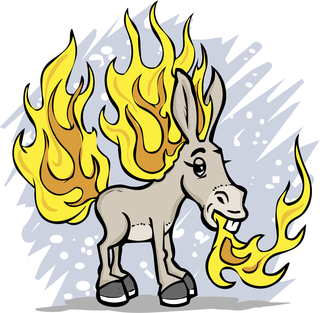 Flaming jackass